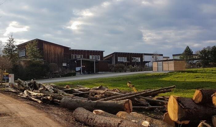 Holzhaus bauen - Was spricht dagegen?